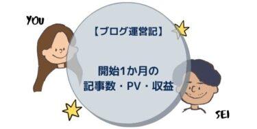 【ブログ運営記】開始1か月の記事数・PV・収益
