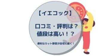 【イエコック】 口コミ・評判は?値段は高い!?便利なカット野菜が自宅に届く!